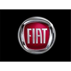 FIAT (5)