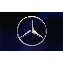 Mercedes-Benz (11)