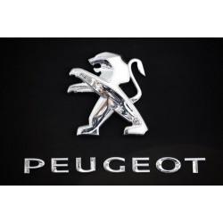 PEUGEOT (6)